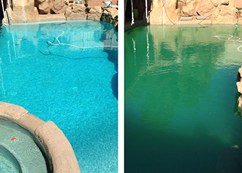 After and Before Pool Service